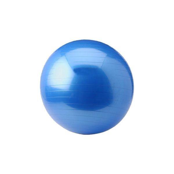 Afbeelding van Gym Ball - Focus Fitness - 55 cm